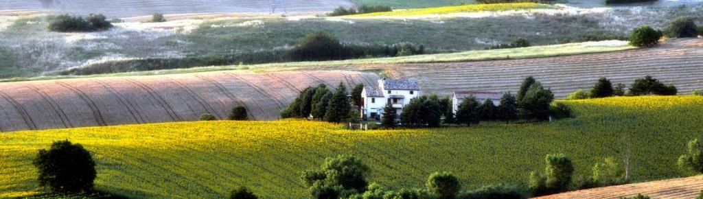 FONDI UE AGRICOLTURA