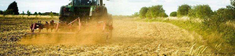 Programma di Sviluppo Rurale Sostegno ad investimenti nelle aziende agricole